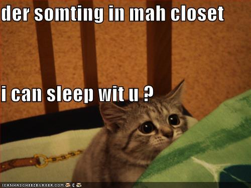 Vienkārši jaukas, skaistas un interesantas bildes par jebko - Page 2 Funny-pictures-scared-cat-asks-to-sleep-with-you