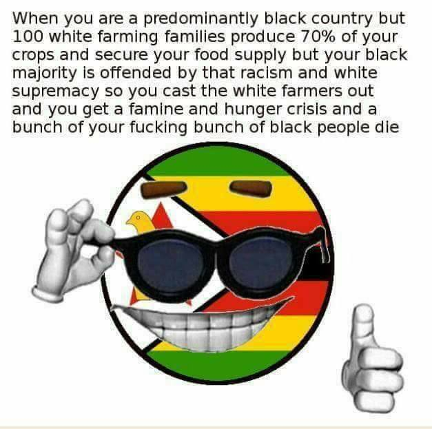 bunch of your fucking bunch memeball Mugabe Neger machen Negersachen picardia Rhodesien Simbabwe strawman ball verdient